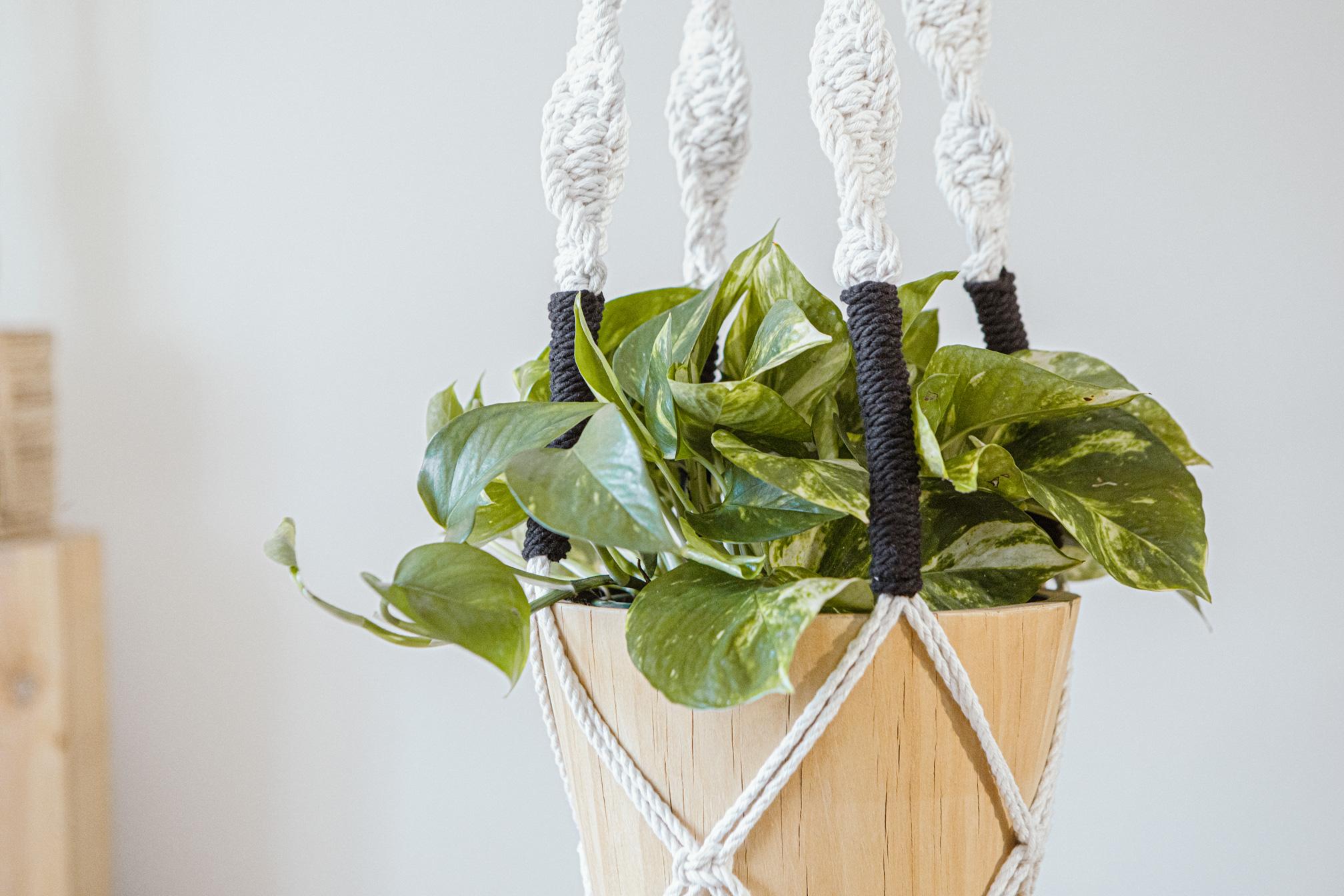 Macetero artesanal de macramé fabricado en algodón ecológico en color crudo con detalles negros