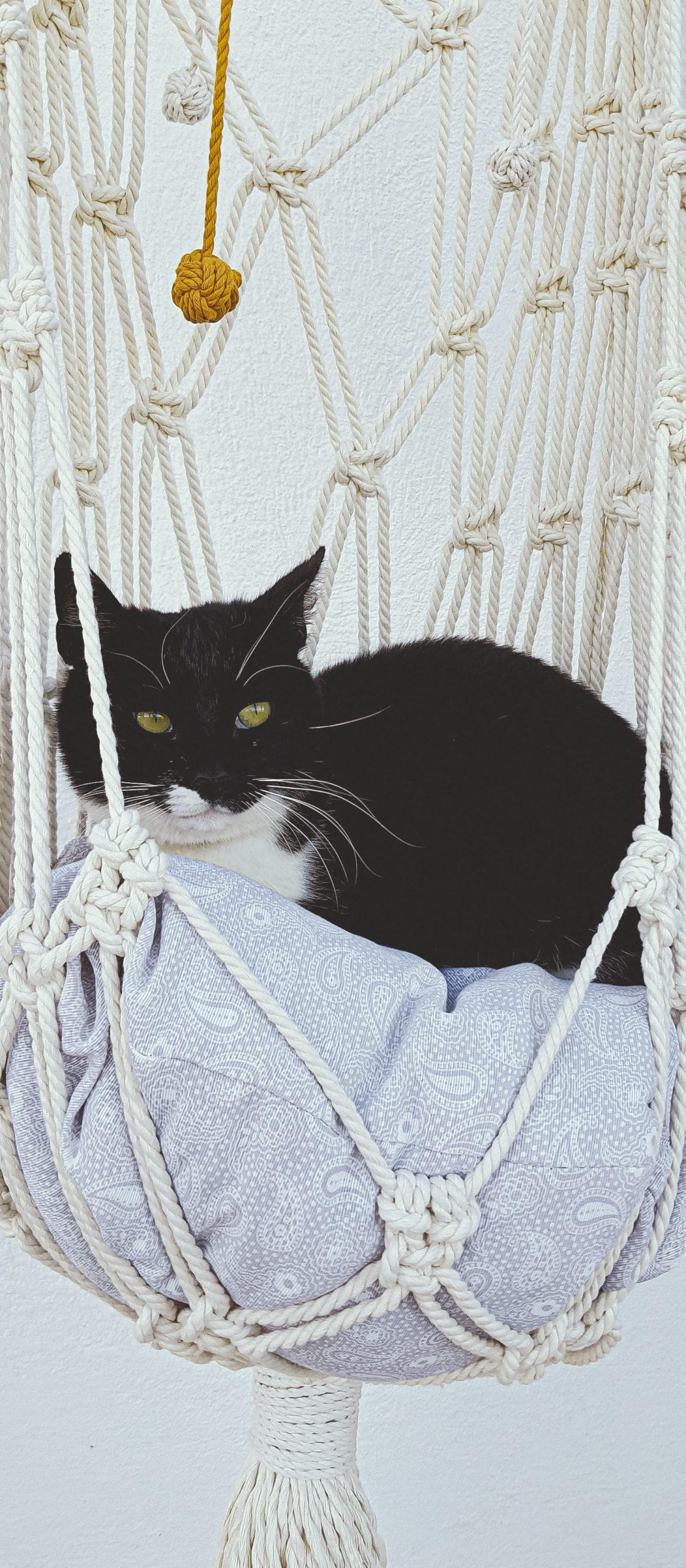 Hamaca de gato de macramé gfabicada con algodón orgánico y materiales sostenibles